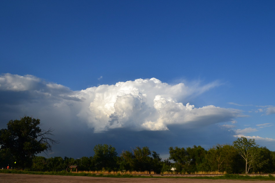 Distant Thunderstorm, Sunny Evening