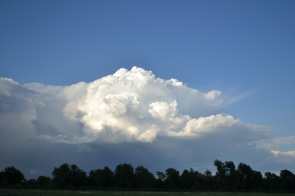 Distant Thunderstorm, Sunny Evening 2
