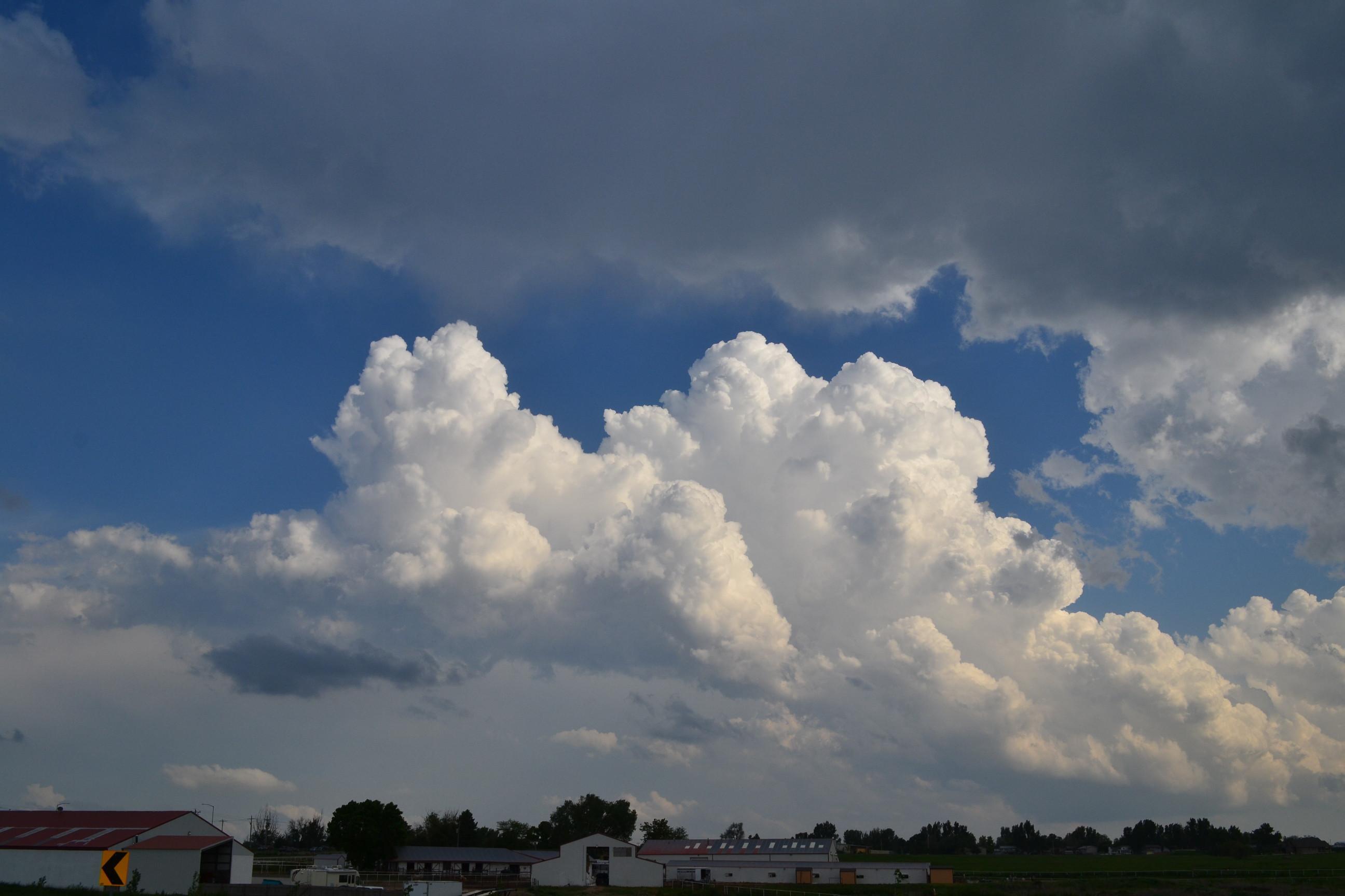 evening cumulus clouds 2015 06 04 cumulus colorado cloud pictures